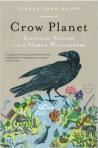 Crow Planet