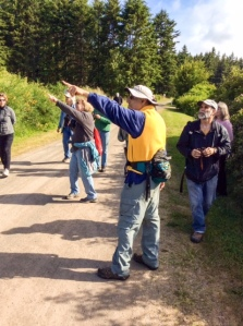 Birding at Anderson Lake